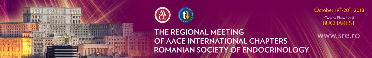 The Regional Meeting of AACE International Chapters